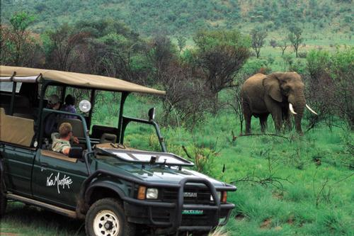 Kwa Maritane Bush Lodge - Pilanesberg National Park (2 Nights) - 2 Nights